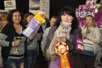 Победитель международной выставки. Британский кот приглашает на вязку.